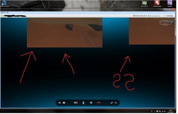 auf dem bild sieht man 2 bilder obwohl ich mich nur mit einer person unterhalte. - (PC, Video, Fehler)