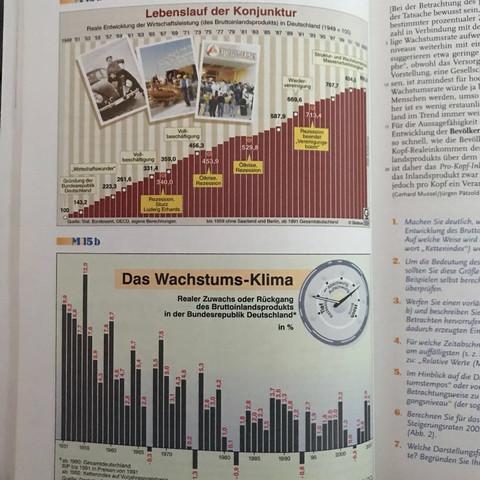 Die Darstellungen - (Wirtschaft, Sozialwissenschaften)