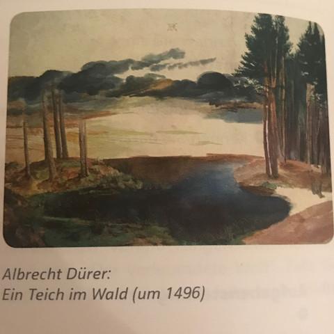Ein Teich im Wald - (deutsch, Geschichte, erzählen)