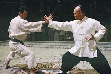fearless - (Anzug, Kampfkunst, Kung Fu)