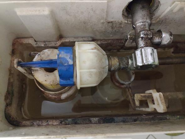 Gut gemocht Spülkasten läuft das Wasser sehr langsam nach, Reinigung MC26