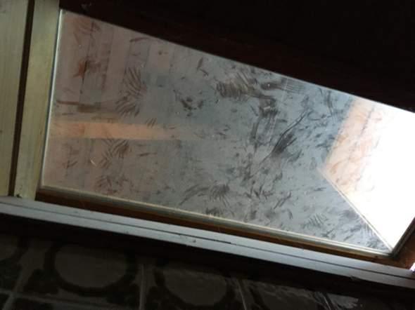 """""""Spuren"""" auf Dachboden was kann das sein?"""
