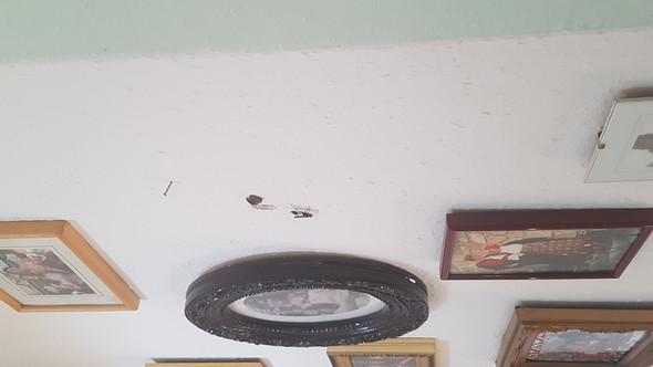sschwarze wespe baut nest hinterm bild was tun insekten wespen wespennest. Black Bedroom Furniture Sets. Home Design Ideas