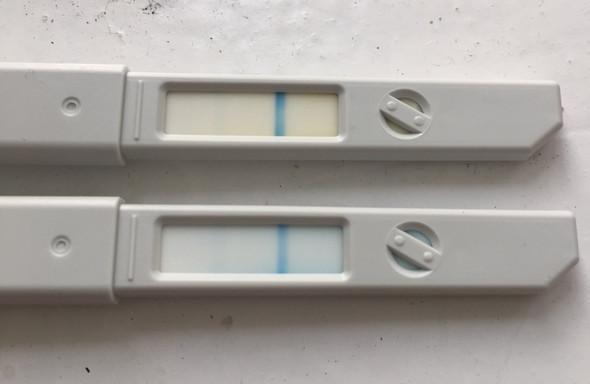 4 tage überfällig test negativ trotzdem schwanger