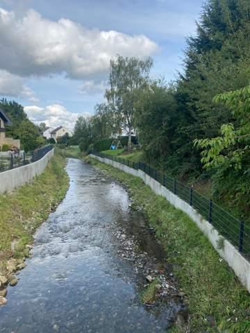 Stadt lässt den Fluss hinter mein Grundstück total verwildern?
