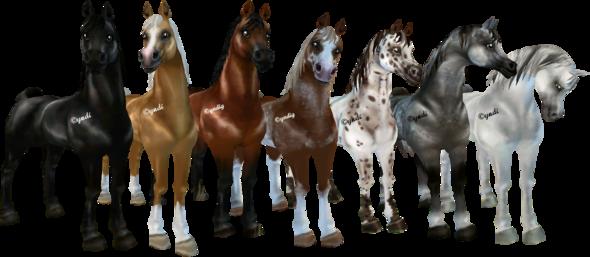 Welchen soll ich mir holen??  - (kaufen, Pferde, Star Stable Online)