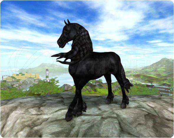 star stable wie teuer kosteen diese pferde. Black Bedroom Furniture Sets. Home Design Ideas