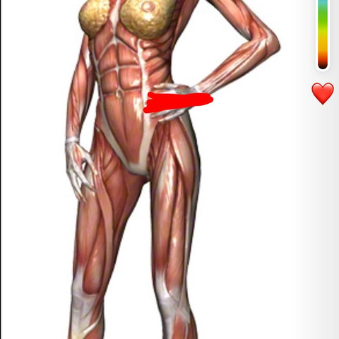 ( auf dem bild zeig ich euch wo soch der schmerz bei mir befindet ) rote strich - (Gesundheit und Medizin, Schmerzen, Sport und Fitness)