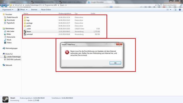 Steam Crash Error - (Internet, Windows 7, Steam)