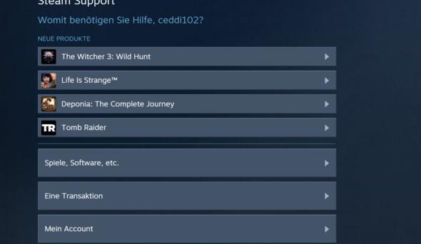 Schritt 2 - (Steam, GTA V, Rückgabe)