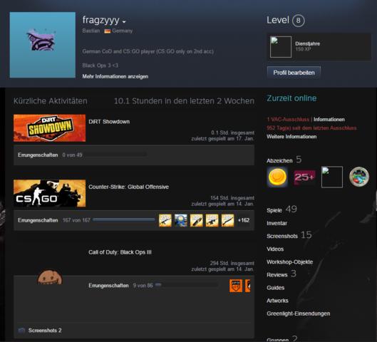 Hier ein Screenshot von dem Bild - (Steam, Profil)