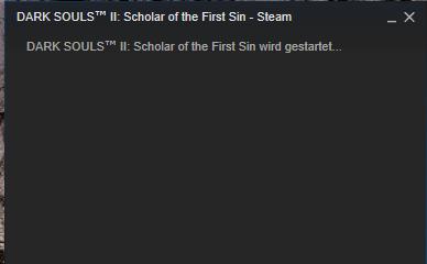 Steam Spiele Starten Nicht