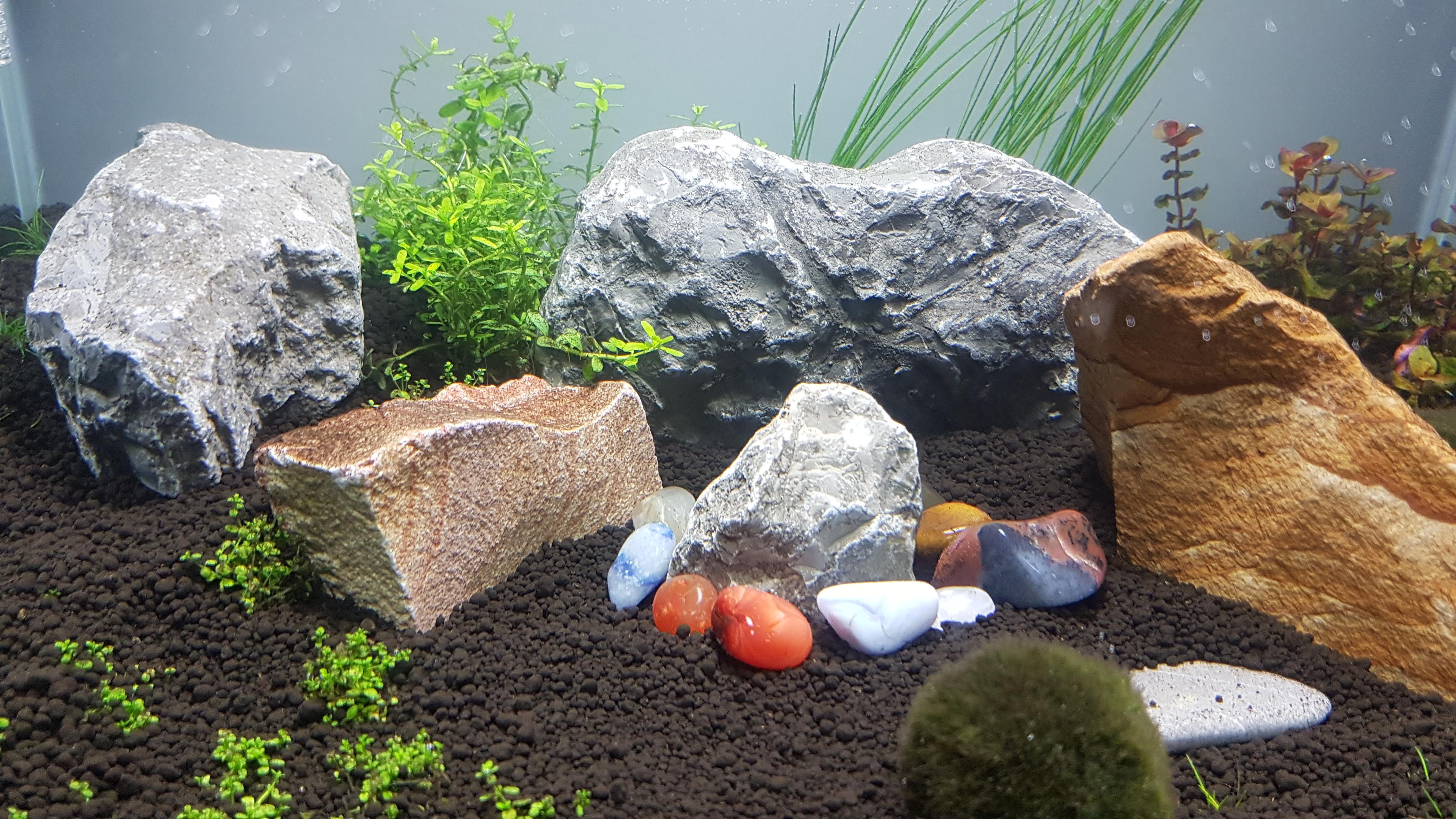 steine f r aquarium ok fische garnelen kalk. Black Bedroom Furniture Sets. Home Design Ideas