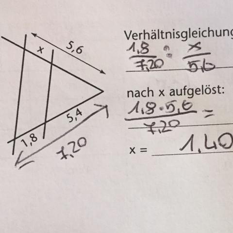 Das hier^^ - (Mathe, Aufgabe, Strahlensatz)