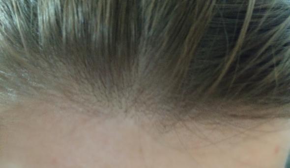 So sieht mein momentaner Ansatz aus.. - (Haare, Beauty, Haarfarbe)