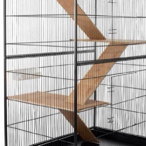 Hier der Käfig - (Käfig, Streifenhörnchen)
