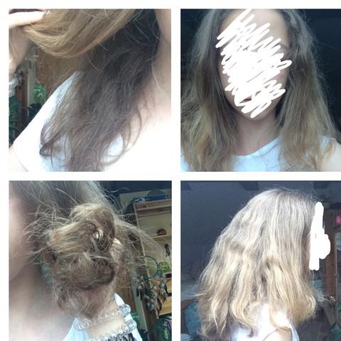 Haare extrem trocken