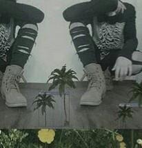 Schuhe  - (Mode, Kleidung, Schuhe)