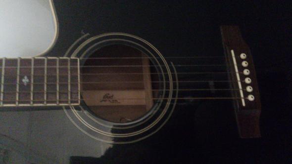 Cort Westerngitarre(1) - (Gitarre, westerngitarre, Cort)