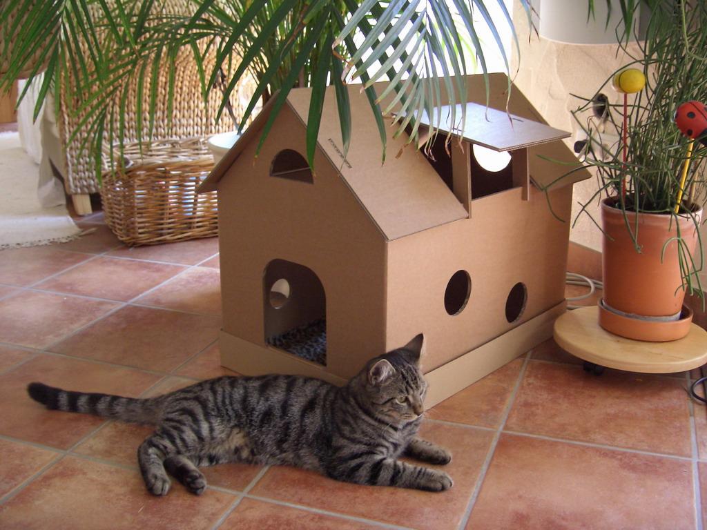 suche etwas n tzliches zum bauen oder basteln mit kartons. Black Bedroom Furniture Sets. Home Design Ideas