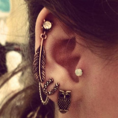 Feder Helix Piercing - (Ohrringe, Feder, helix piercing)