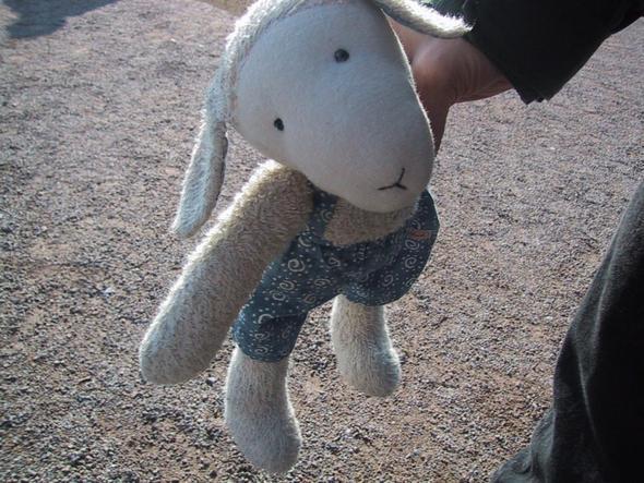 Bild von meinem Schaf - (kuscheltier, Schafe, Sigikid)
