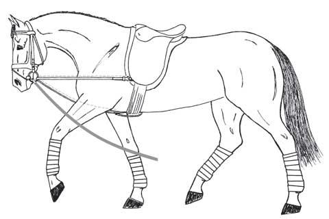 445 malvorlagen pferd mit sattel | coloring and malvorlagan