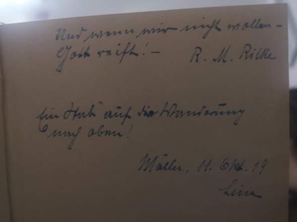 Sütterlin entziffern, 1919 geschrieben?