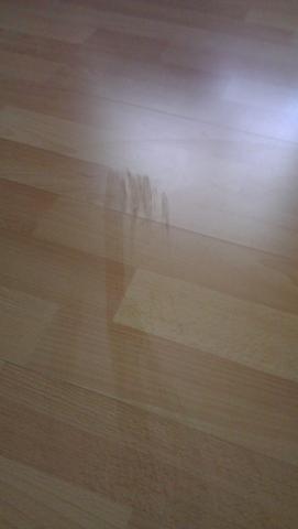Boden - (Reinigung, Boden, Laminat)
