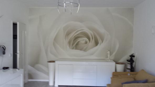 Fototapete Rose - (Recht, Wohnung, renovierung)