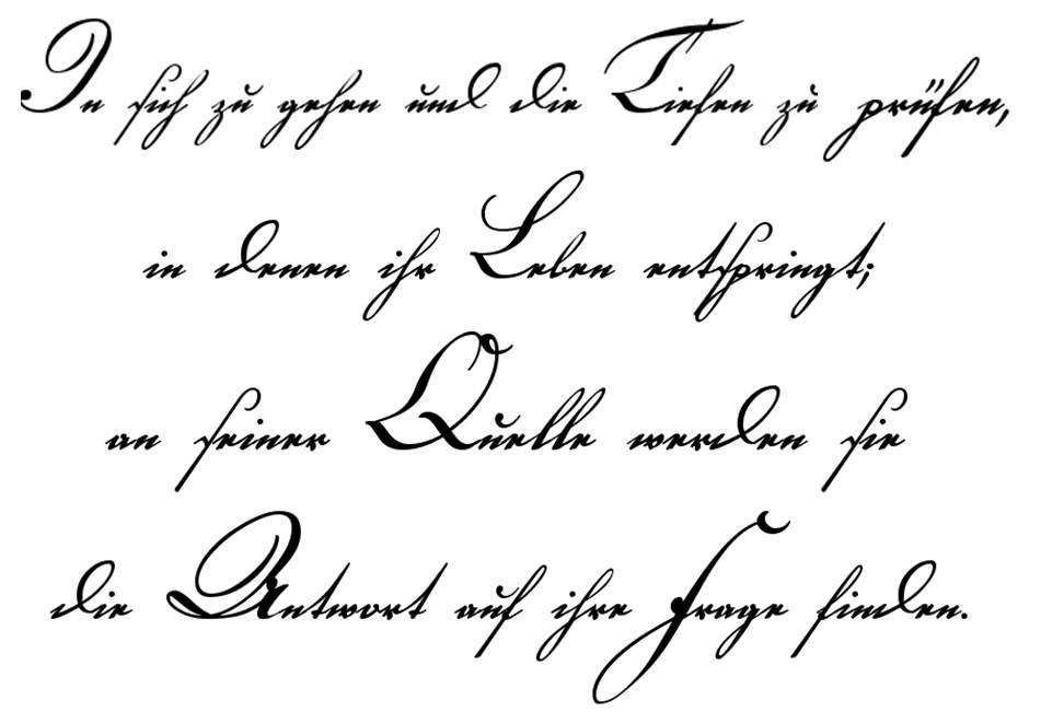 Tattoo rippen schriftzug