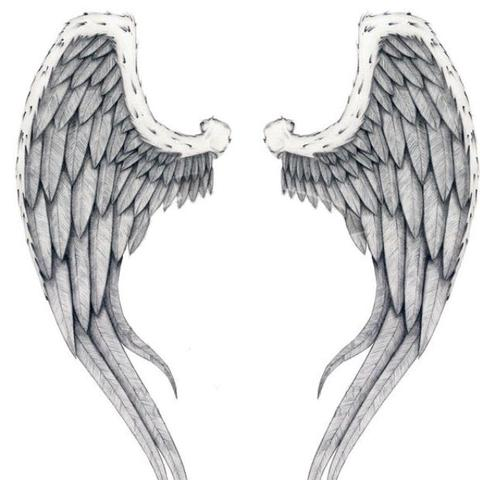 tattoo kosten fl gel unterarm angel wings. Black Bedroom Furniture Sets. Home Design Ideas
