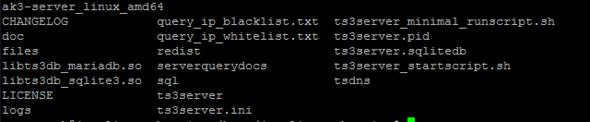 Teamspeak Server will nicht Starten (Ubuntu) was tun?