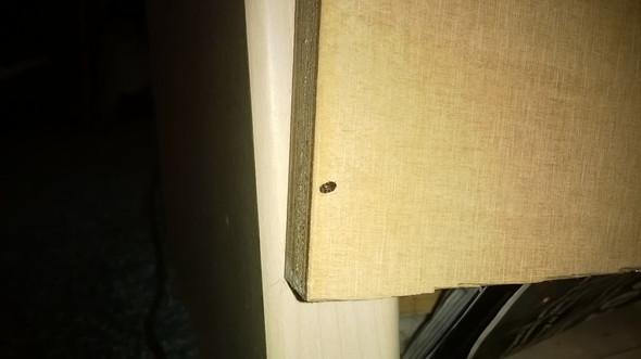 Am Bett - (Käfer, Ungeziefer, Wanzen)
