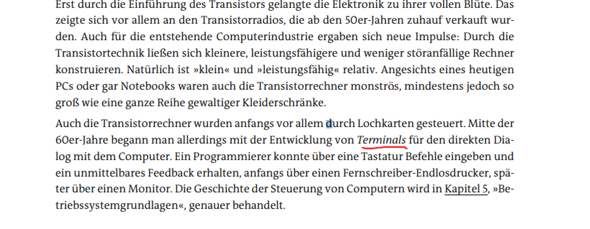 Terminal bedeute hier wie: Tastatur, Maus und so weiter?