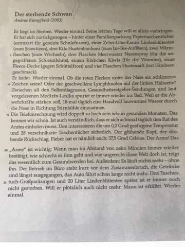 Thema Satire Analyse Schule Deutsch