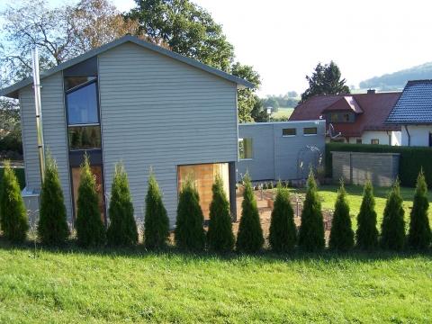 Thuja hecke schneiden pflanzenschnitt for Gartengestaltung thuja