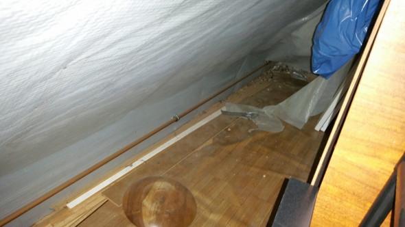 tierkot auf unserem dachboden bitte dringende antwort tiere haus. Black Bedroom Furniture Sets. Home Design Ideas