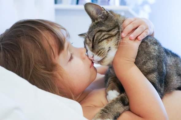 Trauerst du auch lange wenn dein Haustier stirbt?