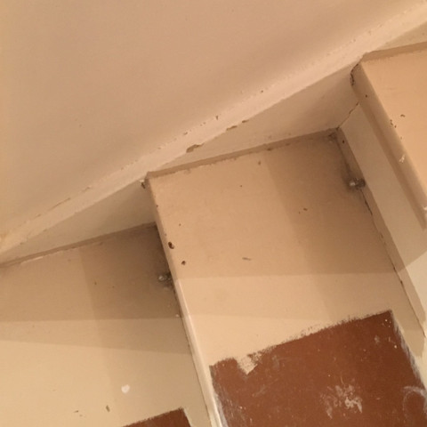 Stufe 2 - (Haus, Farbe, Holz)