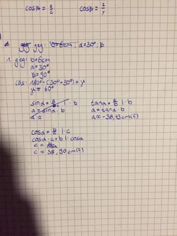 trigonometrie hilfe bitte? schule, mathe, mathematik