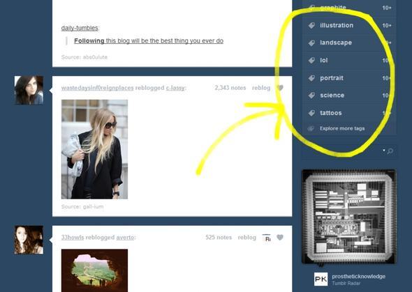 tumblrrrr dashboard - (Computer, Tumblr, tags)