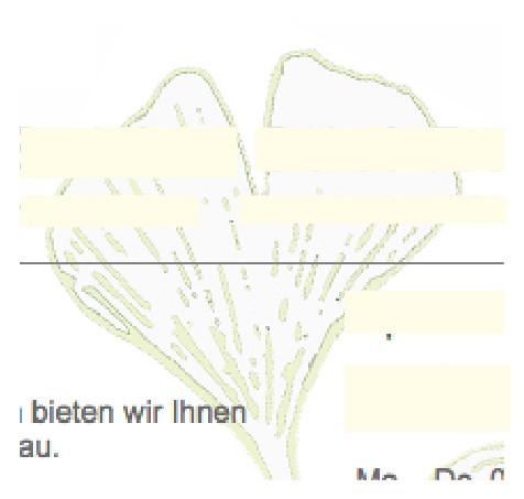 Pflanze - (Biologie, Garten, Pflanzen)