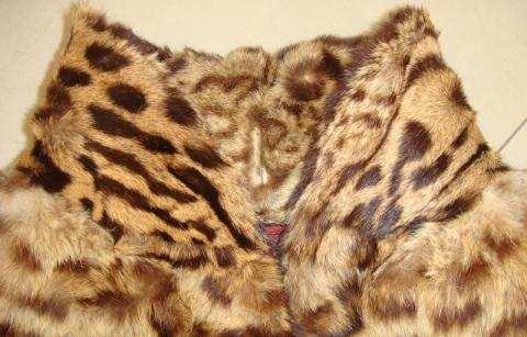 Detail Kragen - (Pelz, Leopard, Raubkatzen)