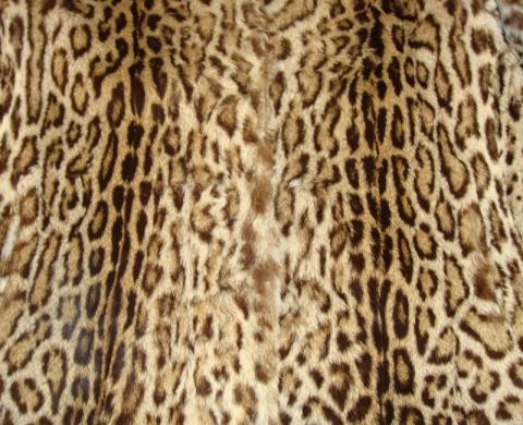 Rueckenansicht gross - (Pelz, Leopard, Raubkatzen)