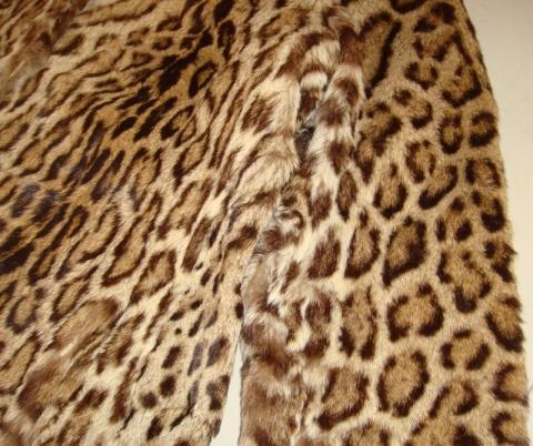 Detail Schulterpartie - (Pelz, Leopard, Raubkatzen)