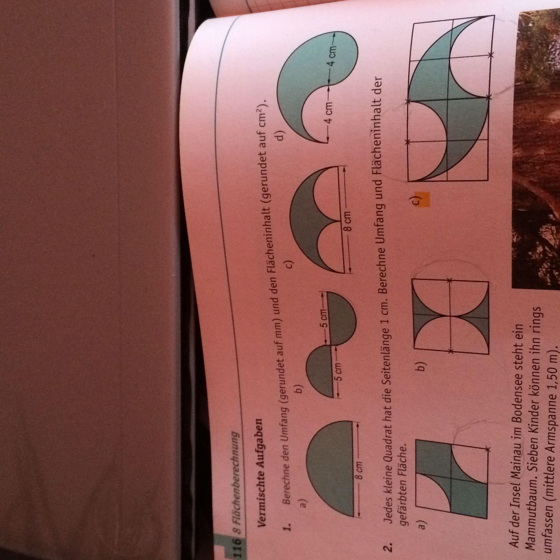 umfang und flächeninhalt der gefärbten fläche? (mathe, formel, kreis)