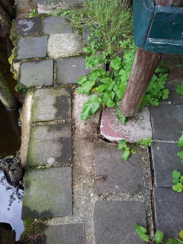 Abgesackte steinplatten - (Haus, Garten, Terrasse)