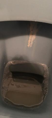 Extrem Urinstein WC entfernen(sehr hartnäckig)? (Toilette, Bad, Klo) FR92