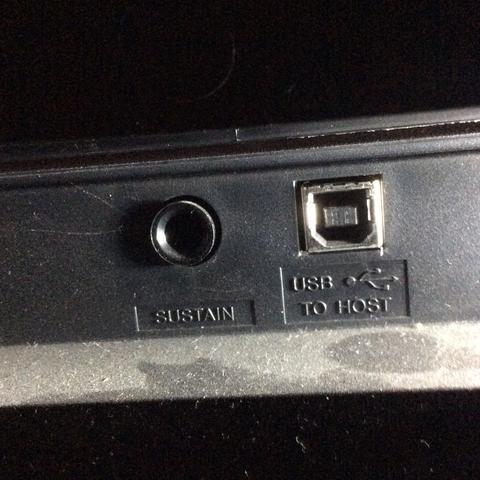 Dies sind 2 von 4 Anschlüssen. Die anderen 2 sind Netzteil und Phones/Output - (USB, Anschluss, Keyboard)